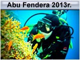 Safari Abu Fendera 2013